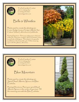 Bells and Whistles & Blue Mountain Container Garden Recipe