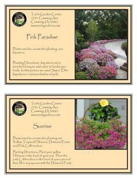 Pink Paradise & Sunrise Container Garden Recipe