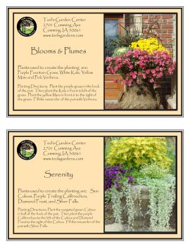Blooms and Plumes & Serenity Container Garden Recipe