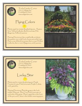 Flying Colors & Lucky Star Container Garden Recipes