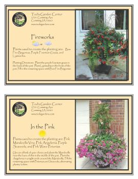 Fireworks & In the Pink Container Garden Recipe