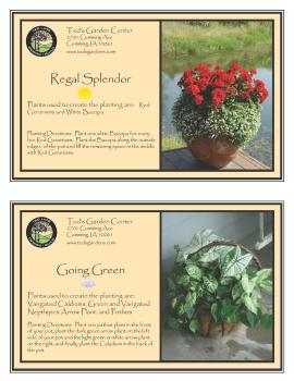 Regal Splender & Going Green Container Garden Recipe
