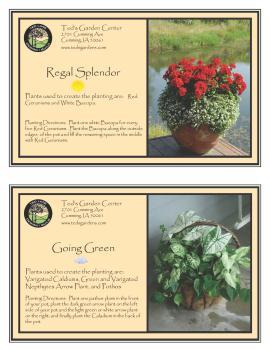 Regal Splender & Going Green Container Garden Recipe
