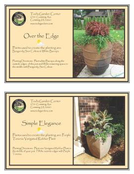 Over the Edge & Simple Elegance Container Garden Recipe