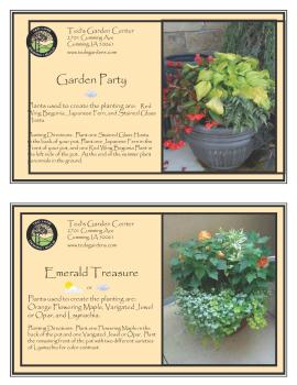 Garden Party & Emerald Treasure Container Garden Recipe