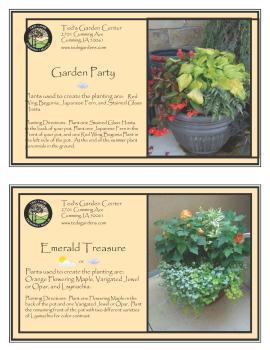 Garden Party & Emerald Treasure Container Garden Recipe