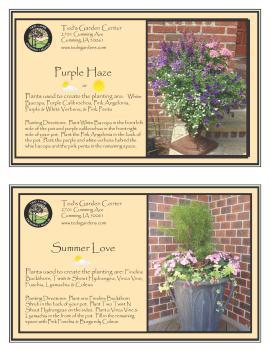 Purple Haze & Summer Love Container Garden Recipe