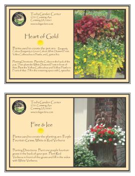 Heart of Gold & Fire and Ice Container Garden Recipe