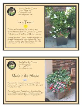 Ivory Tower & Made in the Shade Container Garden Recipe