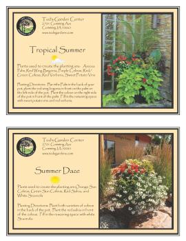 Tropical Summer & Summer Daze Container Garden Recipe