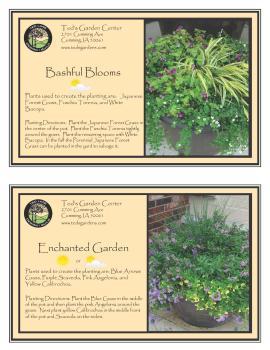 Bashful Blooms & Enchanted Garden Container Garden Recipe
