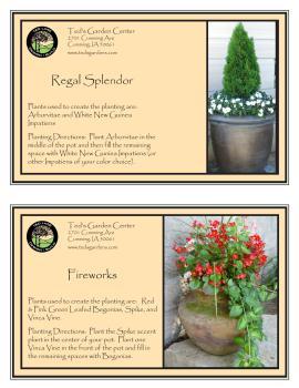 Regal Splendor & Fireworks Container Garden Recipe