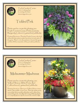 Tickled Pink & Midsummer Madness Container Garden Recipe