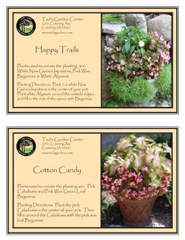 Happy Trails & Cotton Candy Container Garden Recipe