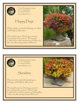 Happy Days & Sunshine Container Garden Recipe