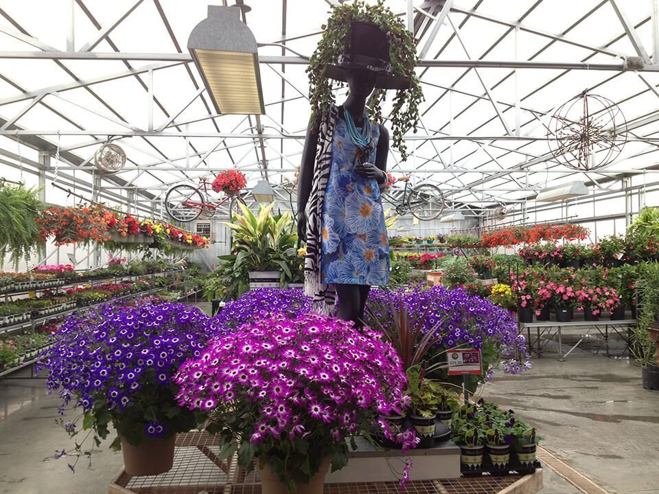 Purple Flower Containers at Ted Lare Greenhouse