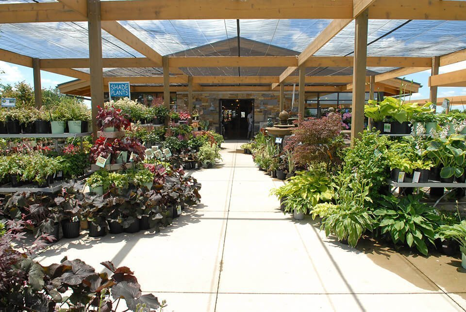 Superb Garden Center At Ted Lare Des Moines Iowa