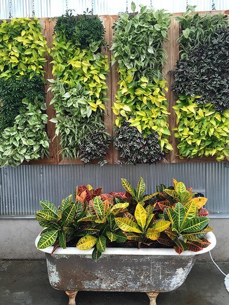 Old Bathtub as Planter in Garden Design