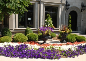 Landscape Design with Purple Flowers