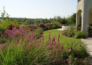Backyard landscaping by Ted Lare Des Moines