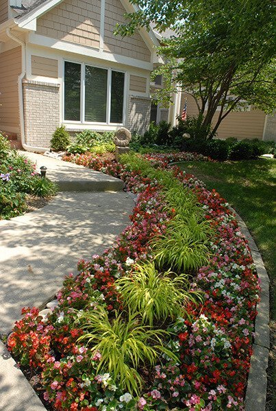 Colorful Landscape Design