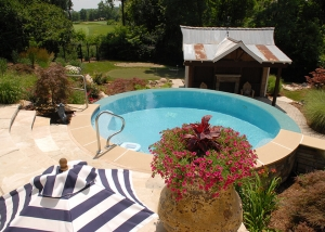 Backyard Pool Landscaping by Ted Lare
