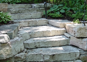 Stone Slab Stairway Through Foliage