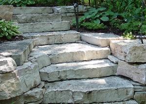Stone Slab Stairway Through Foliage