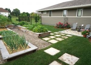 Backyward Elevated Vegetable Garden