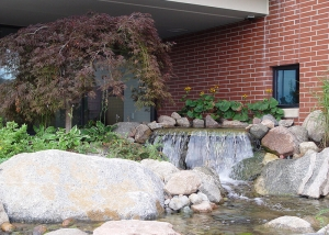 Waterfall and boulders in Backyard Landscaping