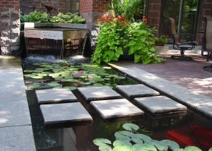 Square Stepping Stones and Lilly Pond Backyard landscaping