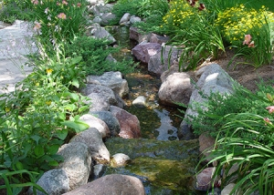 Tranquil Creek and Garden