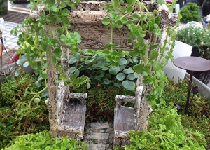 Green Fairy Garden Design