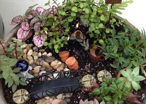 Rock Garden Fairy Garden Design