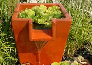Bold Water Fountain Design