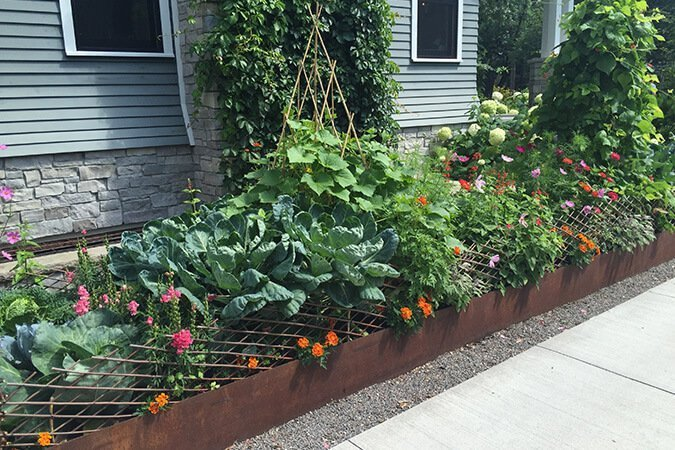 Vegetable Garden - Innovative Small Space Solutions - Ted Lare - Design on plants for green roof, plants for rain gardens, plants for container gardens, plants for planters,