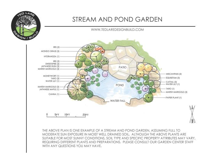 Pond garden ted lare design build for Garden pond design plans