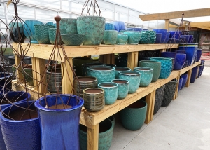 Blue and Teal Pottery Garden Pots at Ted Lare Greenhouse