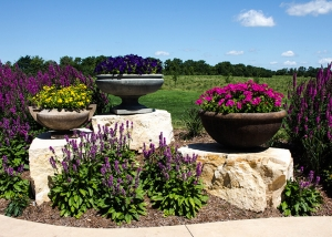 Unique Pottery on Boulders Outdoor Garden Design with Purple Flowers