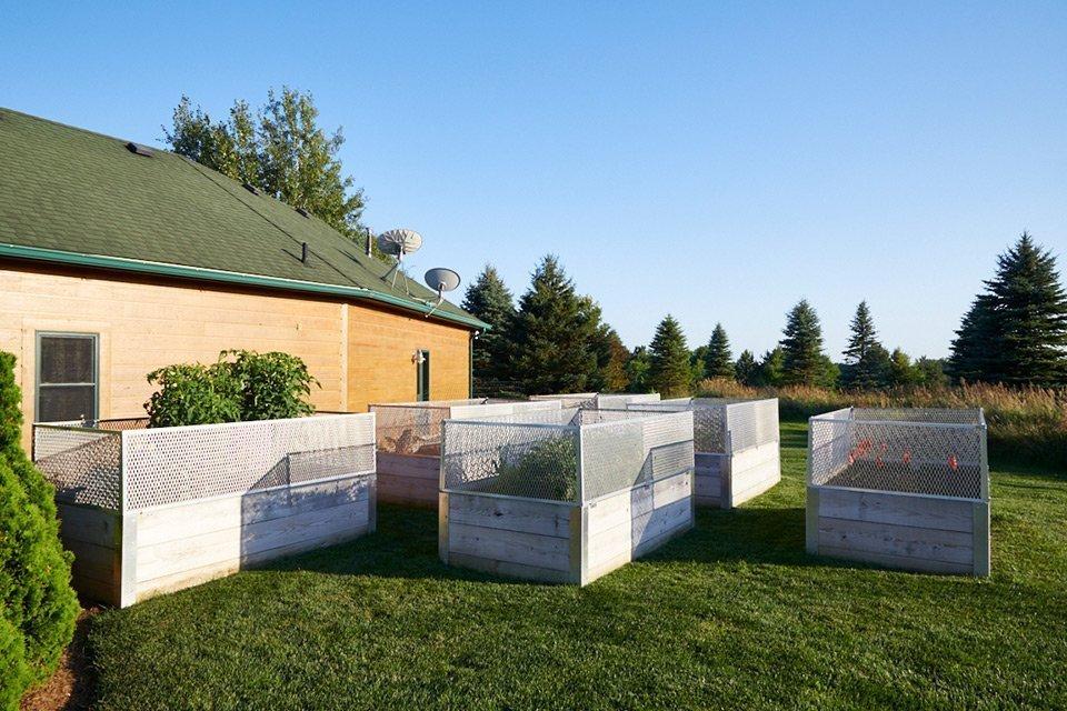 tedsgardens raised vegetable gardens