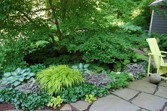 Successful Shade Gardens - Ted Lare - Design & Build