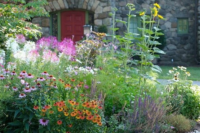 Planting For Pollinators - Ted Lare - Design & Build on native perennial garden, native wildflower garden, native plant garden, native bee habitat,