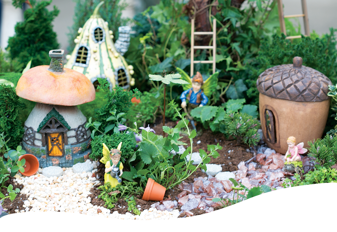 fairy garden terrariums