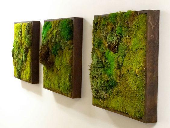 living wall mosswall