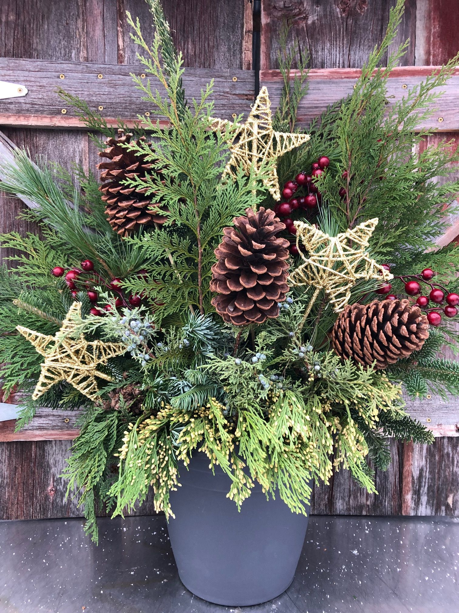 gold holiday evergreen