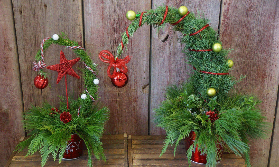 two table top grinch plants o na wooden table